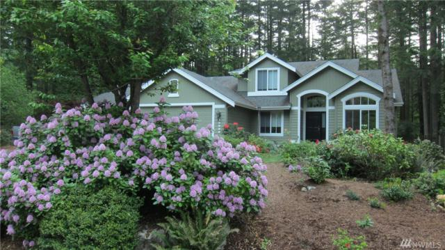 13906 463rd Ave SE, North Bend, WA 98045 (#1363969) :: Homes on the Sound