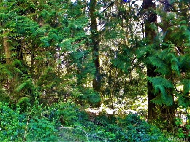 33 #Lot Bethel-Burley Rd Rd SE, Port Orchard, WA 98366 (#1364338) :: Costello Team