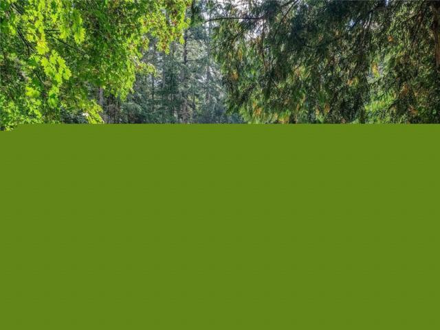 25108-+ Lot 17 Taka Lane NE, Kingston, WA 98346 (#1366562) :: Chris Cross Real Estate Group
