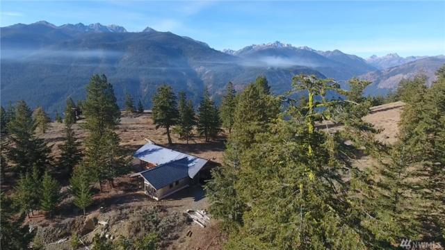 99 Flagg Mountain Lp, Mazama, WA 98833 (#1367069) :: The Royston Team