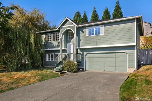 7865 262nd St NW, Stanwood, WA 98292 (#1368095) :: Homes on the Sound