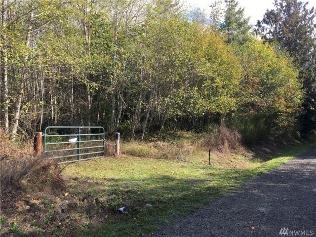 0-Lot N Reeves Hill Dr, Shelton, WA 98584 (#1368735) :: Kwasi Bowie and Associates
