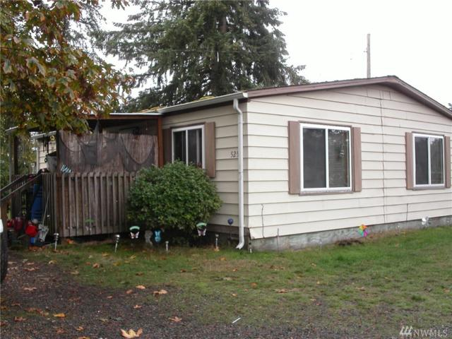 525 Mcnaught Rd S, Roy, WA 98580 (#1369661) :: Crutcher Dennis - My Puget Sound Homes