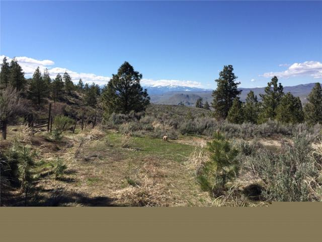 0-XX Whitley Canyon, Brewster, WA 98812 (#1370688) :: Real Estate Solutions Group