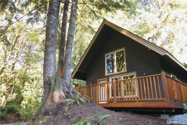 16003 Cedar Cir, Glacier, WA 98244 (#1371039) :: McAuley Real Estate