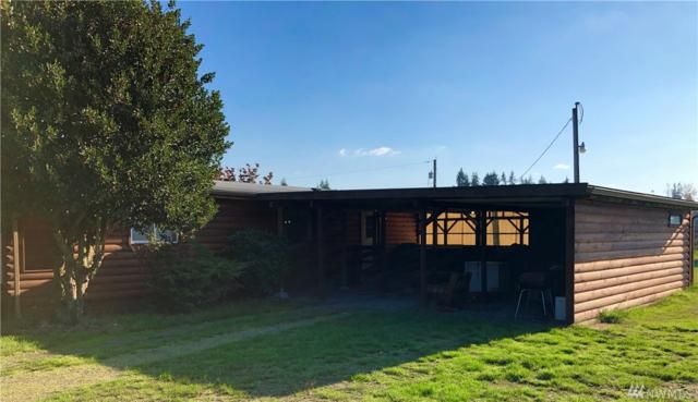 9925 180th Wy SW, Rochester, WA 98579 (#1376883) :: Icon Real Estate Group