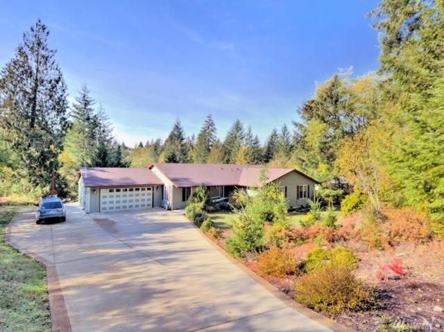 510 E Wilson Way, Grapeview, WA 98546 (#1377764) :: Real Estate Solutions Group