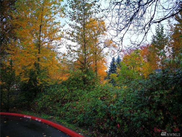 505 Rainier Blvd N, Issaquah, WA 98027 (#1379346) :: Kimberly Gartland Group