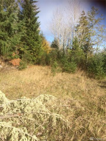 0 Eagle Ridge Rd, Port Angeles, WA 98363 (#1380425) :: Real Estate Solutions Group