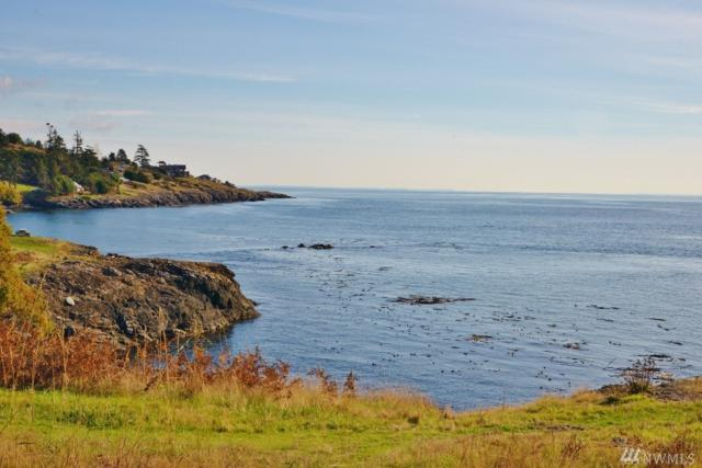 57 West Side Rd, Friday Harbor, WA 98250 (#1382064) :: Homes on the Sound