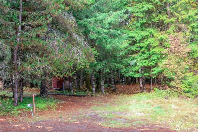 0-0 Maple Ct, White Pass, WA 98937 (#1382603) :: Real Estate Solutions Group