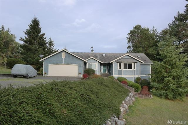 380 Elk Heights Trail, Sequim, WA 98382 (#1382623) :: Kimberly Gartland Group