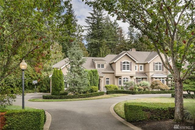 606 289th Ave NE, Carnation, WA 98014 (#1382904) :: The DiBello Real Estate Group