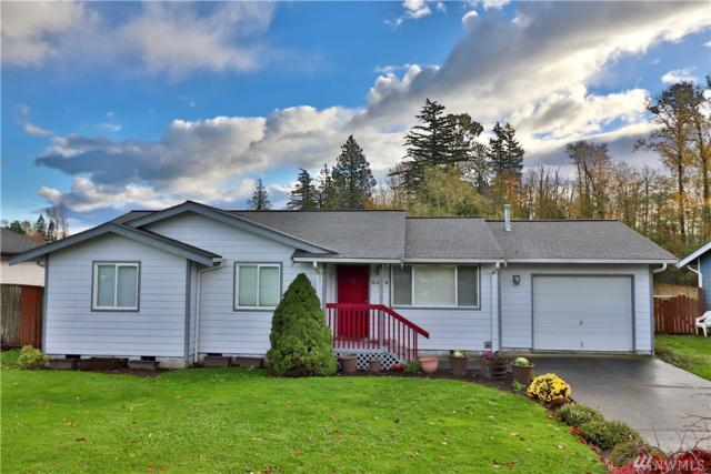 6054 Shannon Ave, Ferndale, WA 98248 (#1383000) :: McAuley Real Estate