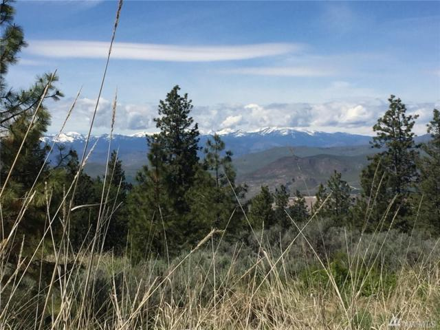 0 Whitley Canyon Rd, Brewster, WA 98812 (#1383812) :: The Royston Team