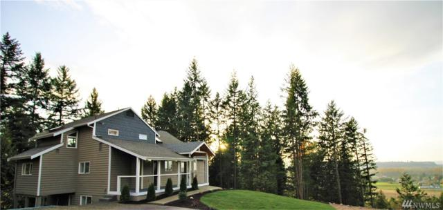 17621 Elhi Rim Rd, Bonney Lake, WA 98391 (#1383866) :: NW Home Experts