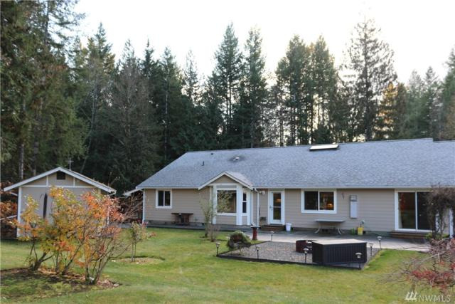 160 Cougar Dr, Packwood, WA 98361 (#1384782) :: Hauer Home Team