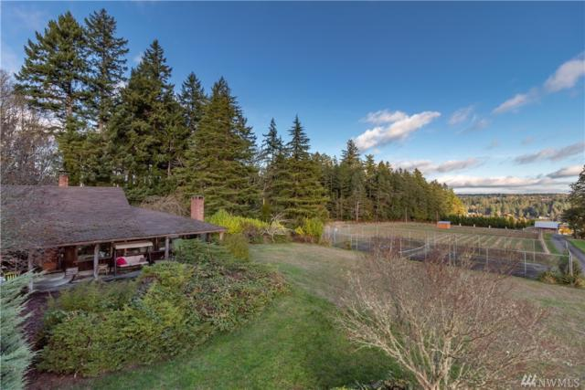 4905 19th St Ct NW, Gig Harbor, WA 98335 (#1387076) :: Homes on the Sound