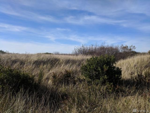 84 Dunes Lane, Ocean Shores, WA 98569 (#1387486) :: Keller Williams Realty