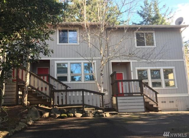 534 University Rd, San Juan Island, WA 98250 (#1388050) :: Mike & Sandi Nelson Real Estate