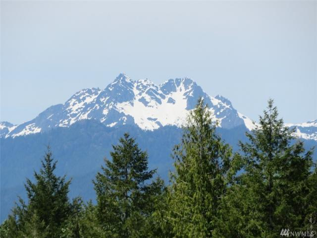 0-Lot 3 Wayne Rd, Seabeck, WA 98380 (#1388074) :: Crutcher Dennis - My Puget Sound Homes