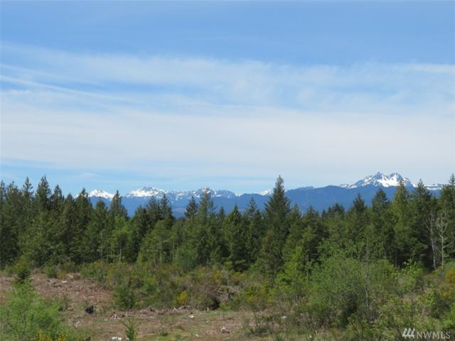 0-Lot 5 Wayne Rd, Seabeck, WA 98380 (#1388226) :: Crutcher Dennis - My Puget Sound Homes