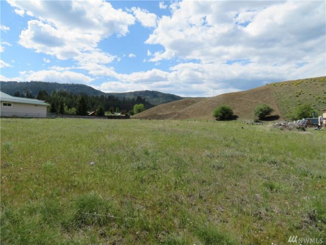 0-TBD N Hwy 21, Danville, WA 99121 (#1388270) :: Keller Williams Western Realty