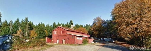 41 NE Byerly Dr, Belfair, WA 98528 (#1388548) :: Pickett Street Properties