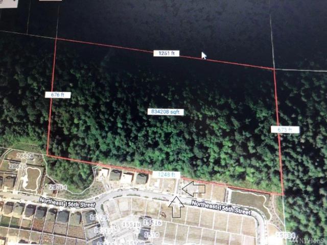 28900 NE 156th St, Duvall, WA 98019 (#1390694) :: HergGroup Seattle
