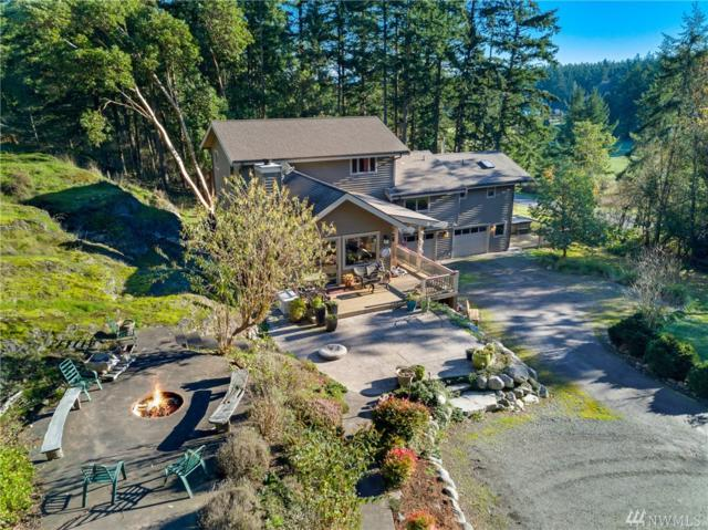 43 Carter Beach Rd, San Juan Island, WA 98250 (#1391247) :: Ben Kinney Real Estate Team