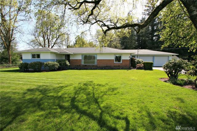 256 Brim Rd, Onalaska, WA 98570 (#1392133) :: Ben Kinney Real Estate Team