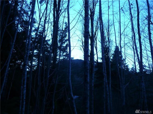271 Elk Rd, Brinnon, WA 98320 (#1392390) :: Crutcher Dennis - My Puget Sound Homes