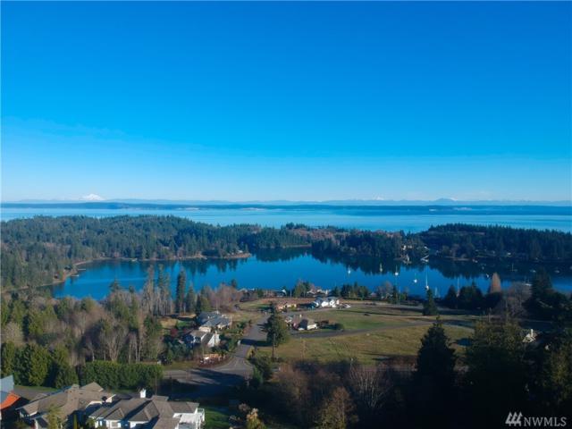235 Mats View Terr, Port Ludlow, WA 98365 (#1392784) :: Kimberly Gartland Group