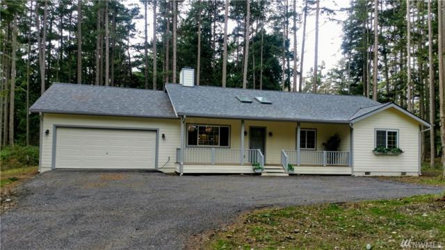 20 Black Fox Place, San Juan Island, WA 98250 (#1393047) :: Homes on the Sound