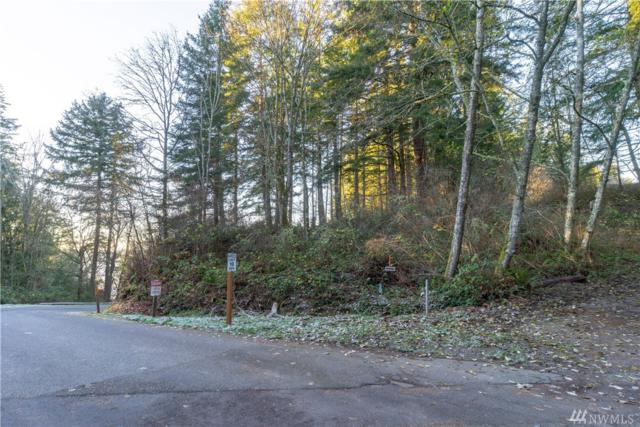 0 Mckee's Beach Rd, Stanwood, WA 98292 (#1394417) :: Real Estate Solutions Group