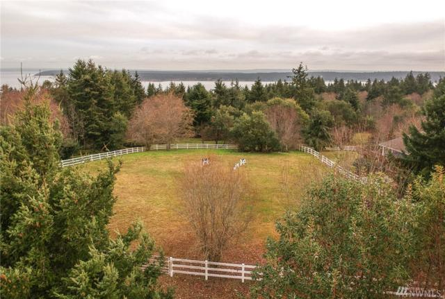 62 Marilyn Ct, Port Townsend, WA 98368 (#1394545) :: Pickett Street Properties