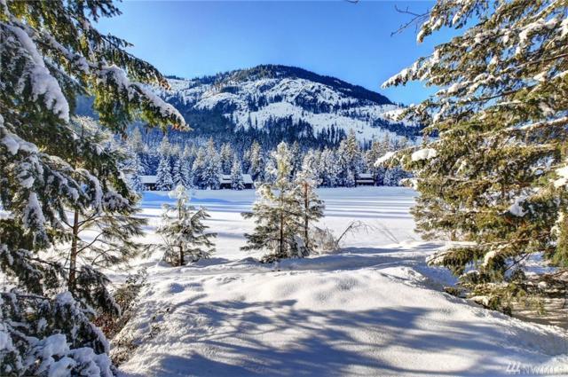 21 Early Winters Dr, Mazama, WA 98833 (#1396324) :: Homes on the Sound