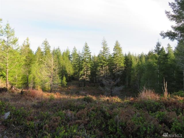 0-Lot 8 W Newberry Lane, Elma, WA 98541 (#1396348) :: Mike & Sandi Nelson Real Estate