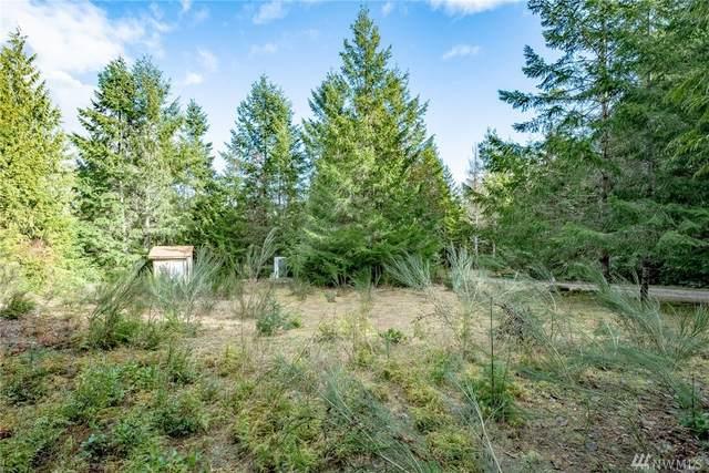 0 N Triton Heights Rd, Lilliwaup, WA 98555 (#1396823) :: The Kendra Todd Group at Keller Williams