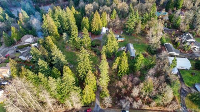 25610 217th Ave SE, Maple Valley, WA 98038 (#1398690) :: Kimberly Gartland Group