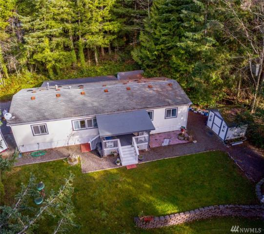 4159 Agate Rd, Bellingham, WA 98226 (#1401681) :: Homes on the Sound