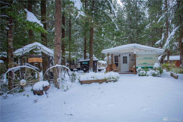 3-2 Wilderness Wy, Deming, WA 98244 (#1401709) :: Homes on the Sound