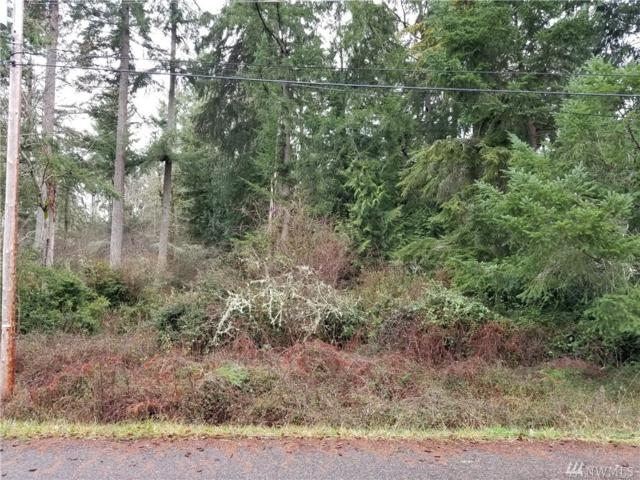 10820 Seaview Dr, Anderson Island, WA 98303 (#1401881) :: Better Homes and Gardens Real Estate McKenzie Group