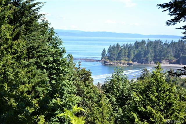 0 Crescent Bay Lane, Port Angeles, WA 98363 (#1402501) :: Homes on the Sound