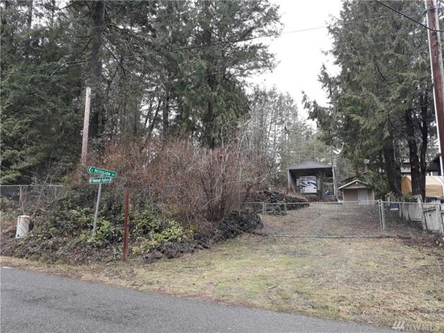 380 E Twanoh Falls Dr, Belfair, WA 98528 (#1402779) :: Homes on the Sound
