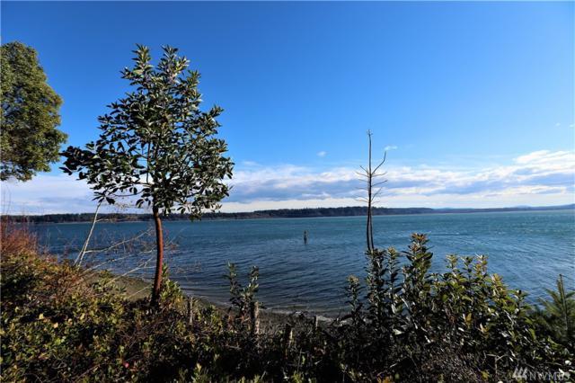 12208 144th St, Anderson Island, WA 98303 (#1405439) :: McAuley Homes