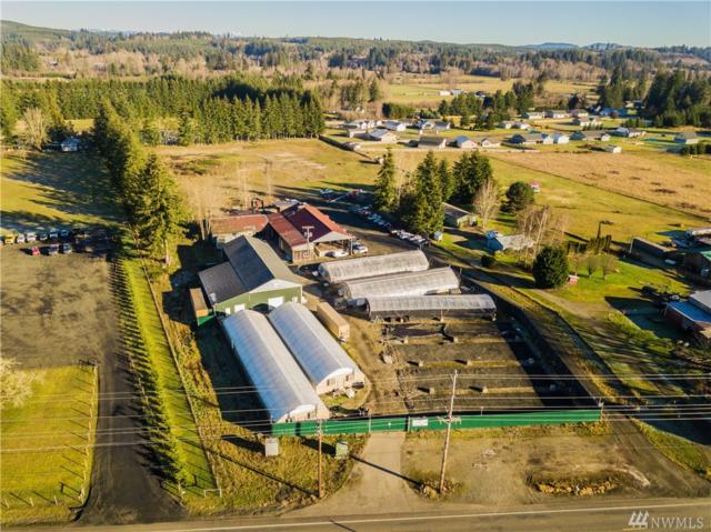 1087 Monte Elma Rd, Elma, WA 98541 (#1406687) :: Real Estate Solutions Group
