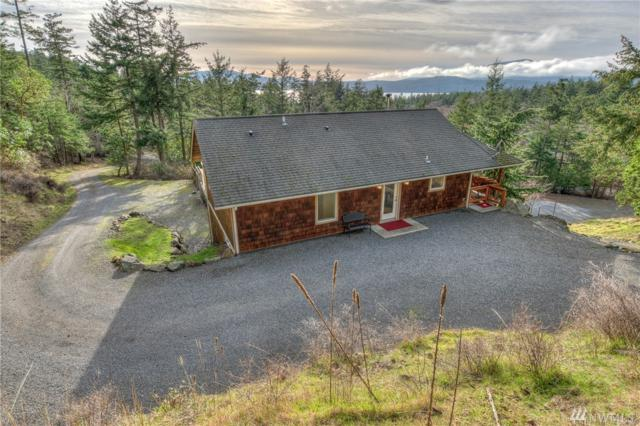 281 Buck Mountain Rd, Orcas Island, WA 98245 (#1406983) :: Homes on the Sound