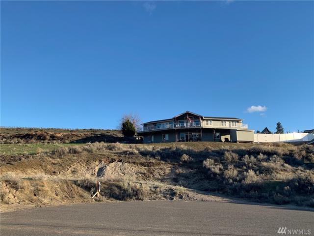280 E Marine View Dr, Orondo, WA 98843 (#1408154) :: Real Estate Solutions Group