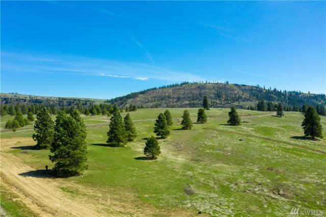 2699 Hidden Valley Rd, Cle Elum, WA 98922 (#1416776) :: Record Real Estate
